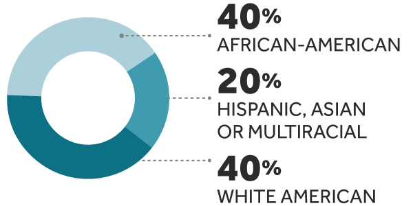 40% African-American, 20% Hispanic, Asian or Multicultural, 40% White American