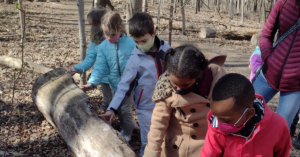 Kindergarten Students study nature at a park, Spring 2021